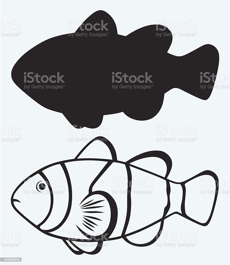 Tropical reef fish royalty-free stock vector art