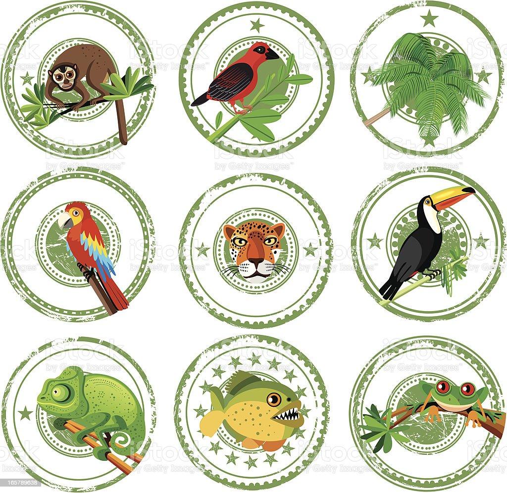 Tropical stamps vector art illustration