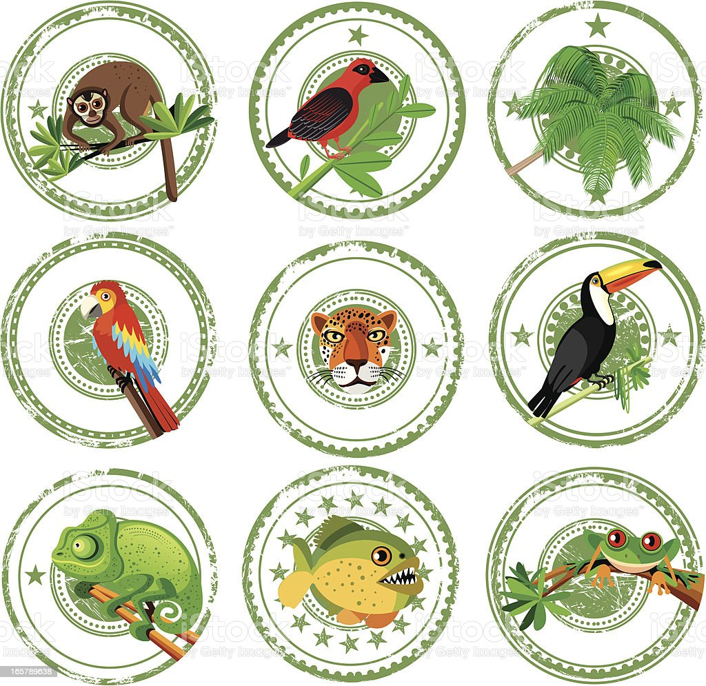 Tropical stamps vector art illustration