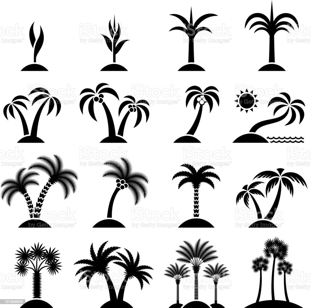 Tropical Tree Collection black & white vector icon set vector art illustration