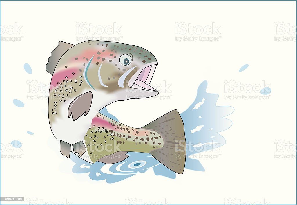 Trout jumping vector art illustration