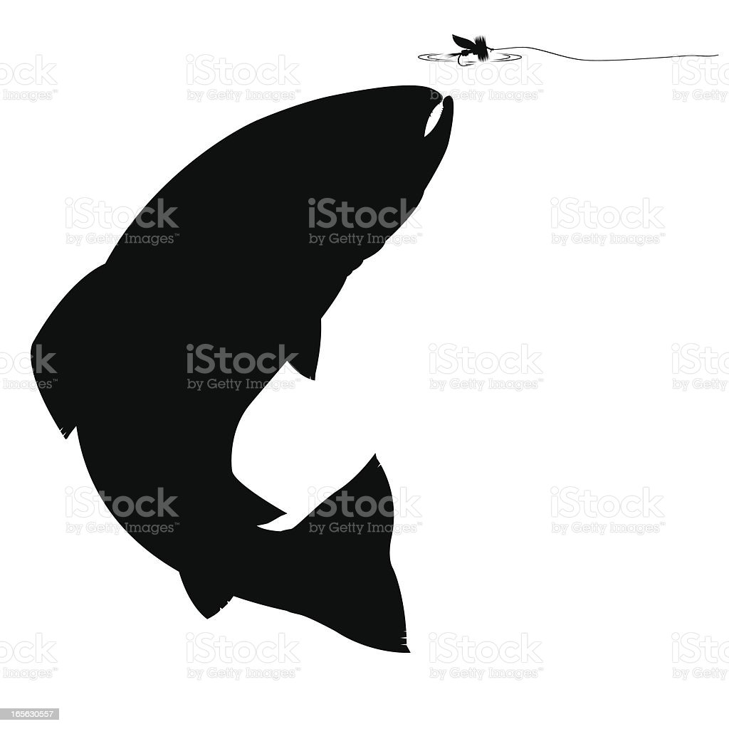 Trout silhouette vector art illustration