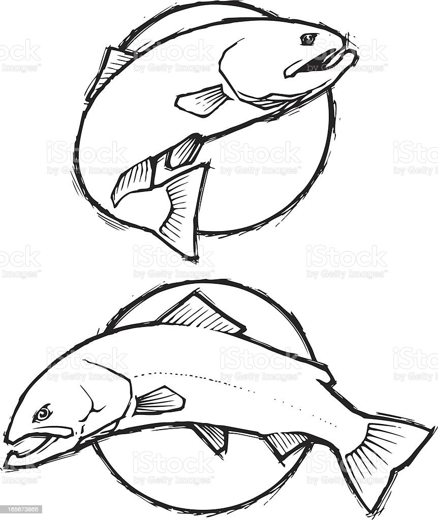 Trout Sketch - Simple royalty-free stock vector art