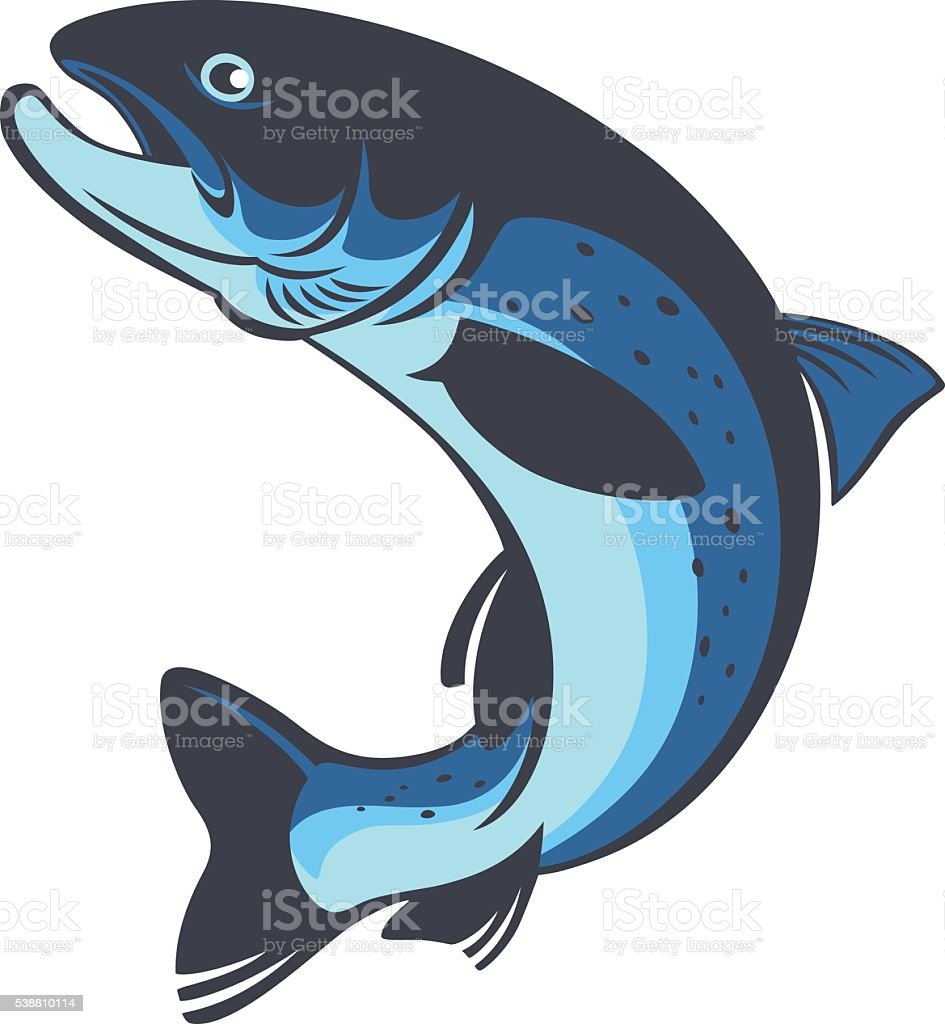 trout vector art illustration