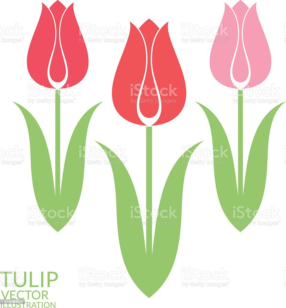Tulip. Set vector art illustration