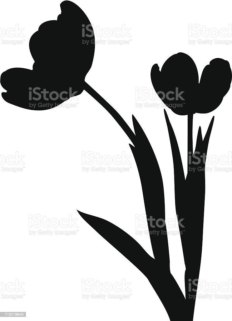 Tulip Silhouette vector art illustration