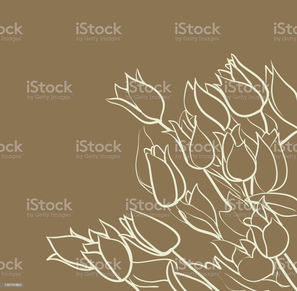 tulips royalty-free stock vector art