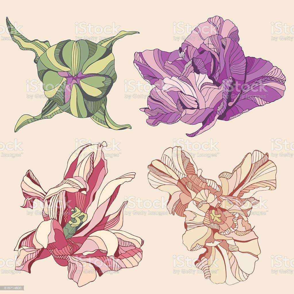 tulips vector art illustration