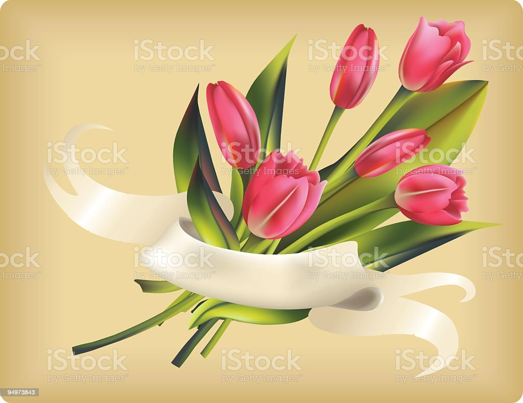Tulips With Ribbon Banner royalty-free stock vector art
