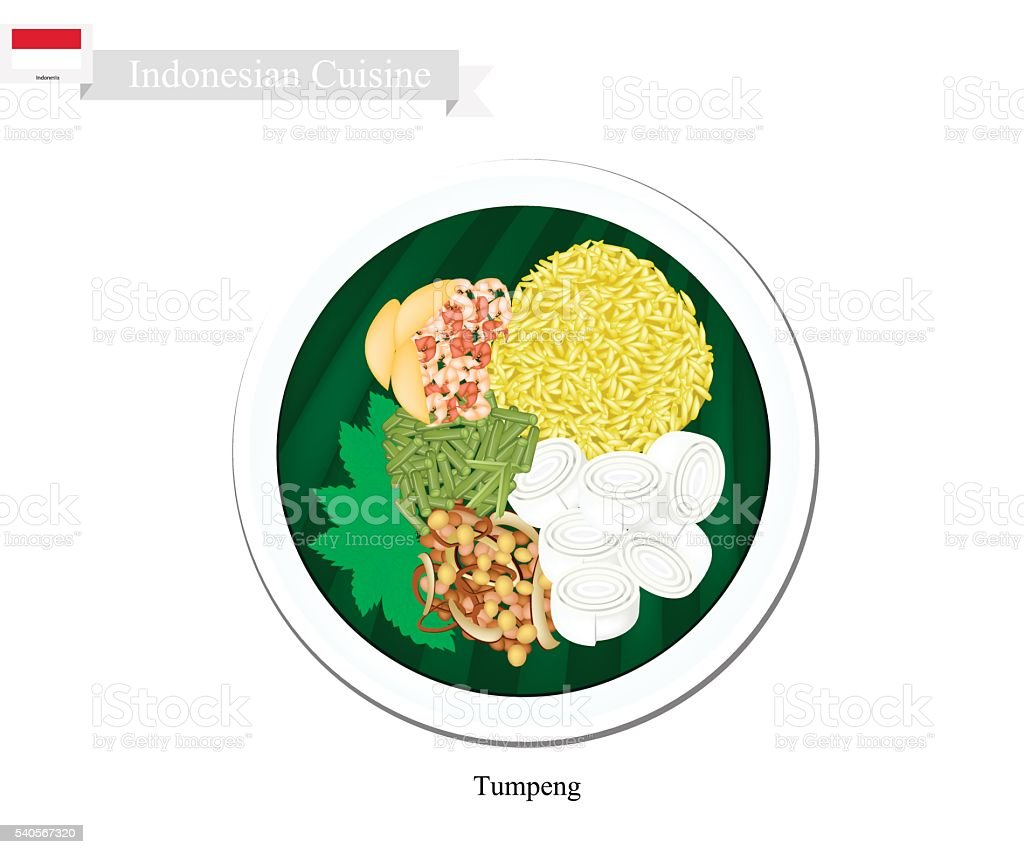 Tumpeng or Indonesian Yellow Rice with Various Indonesian Foods vector art illustration
