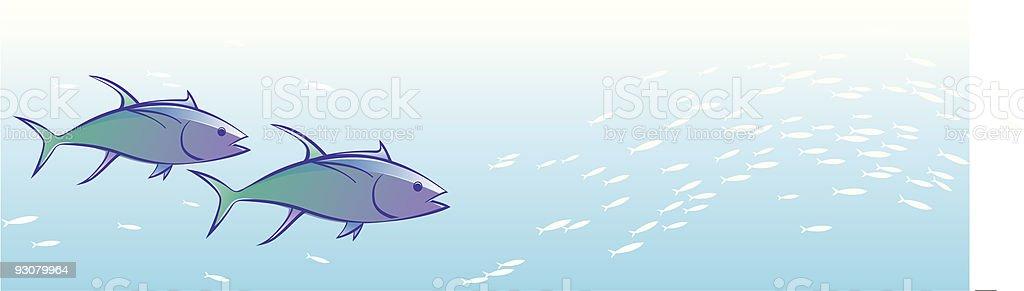 Tuna Chase royalty-free stock vector art