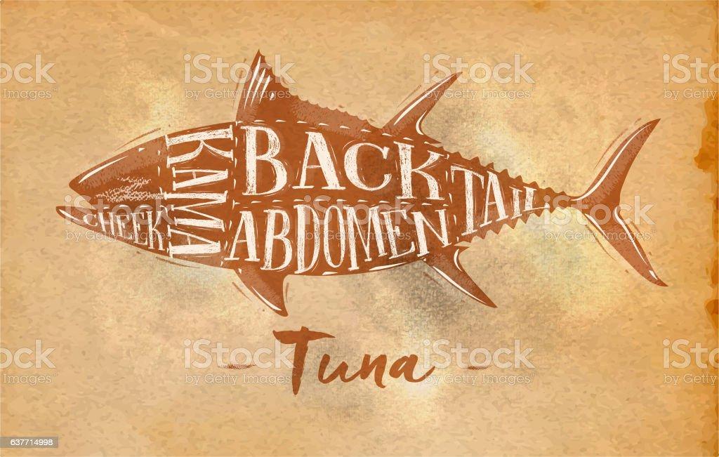 Tuna cutting scheme craft vector art illustration