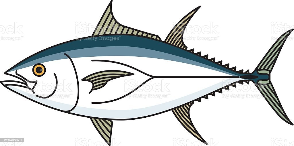 tuna vector art illustration
