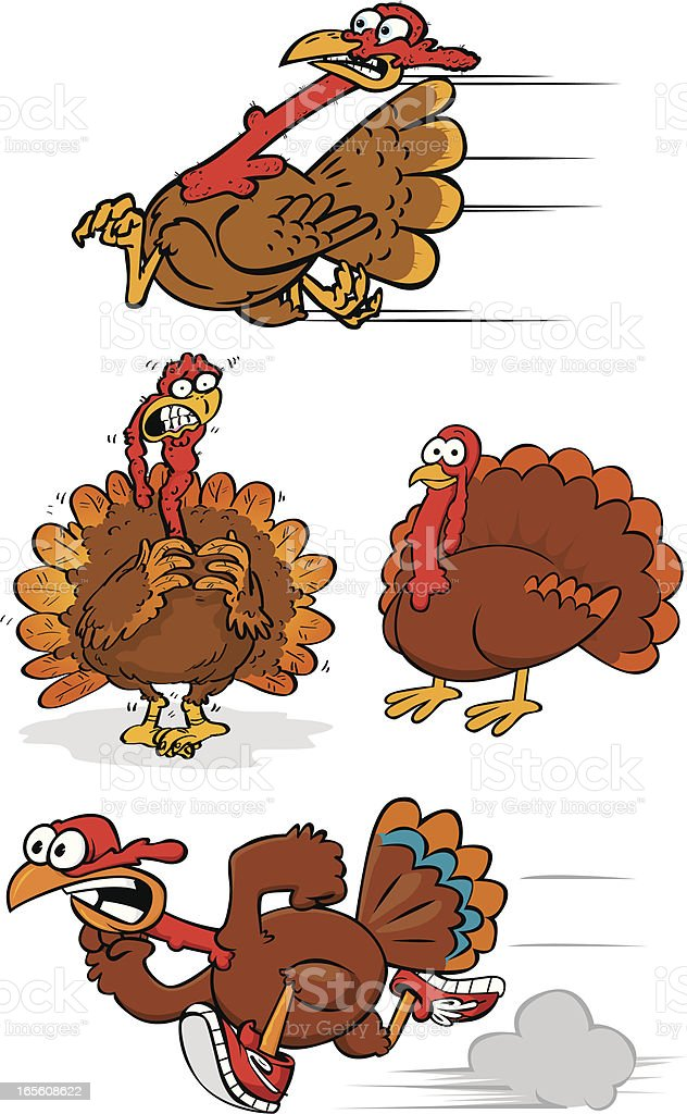 turkey collection royalty-free stock vector art