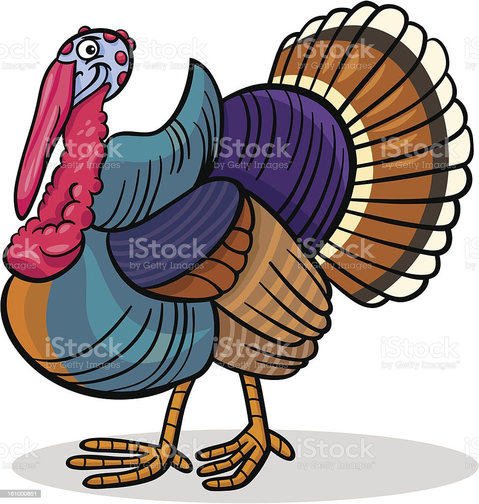 Cartoon Illustration of Funny Turkey Farm Bird Animal
