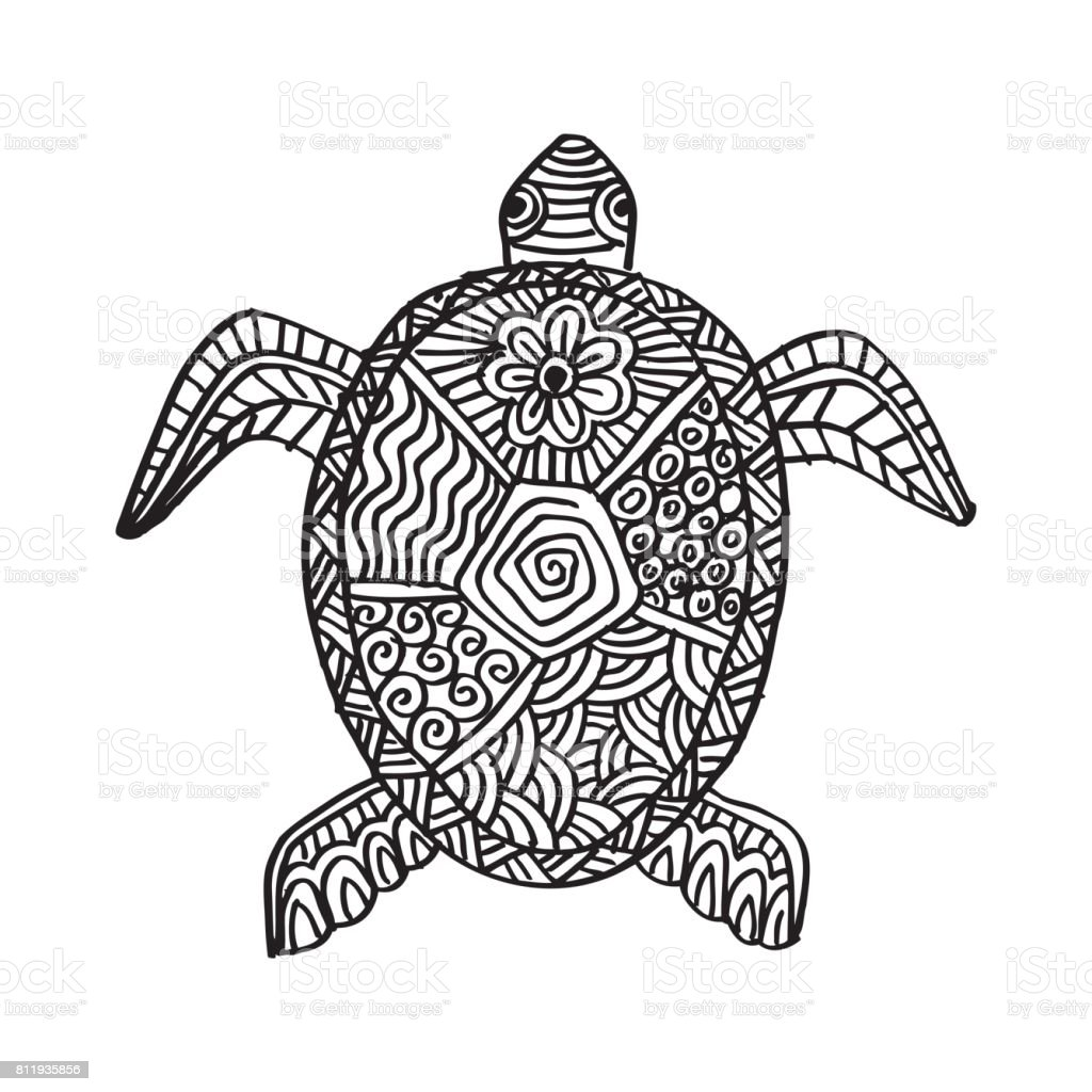 turtle vector art illustration