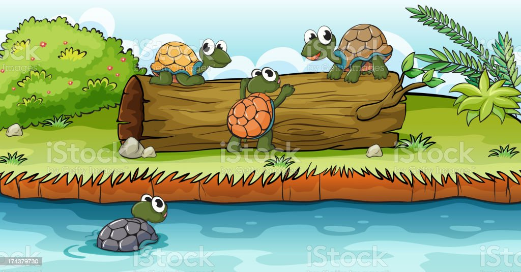 Turtles on a dry wood royalty-free stock vector art