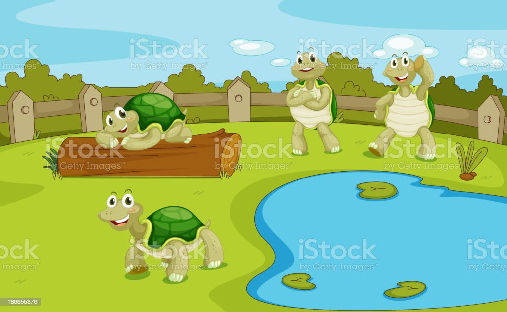 Turtles royalty-free stock vector art