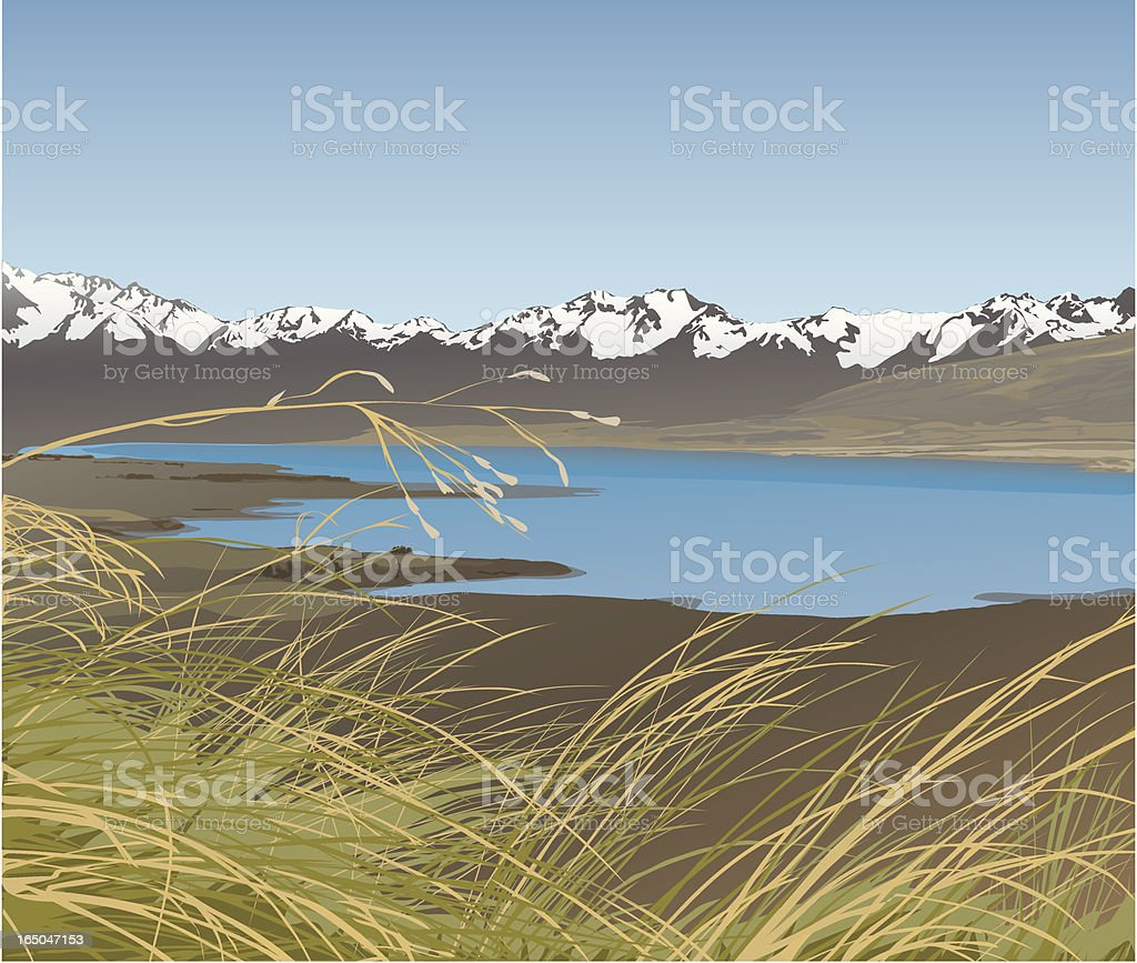 Tussocklands royalty-free stock vector art