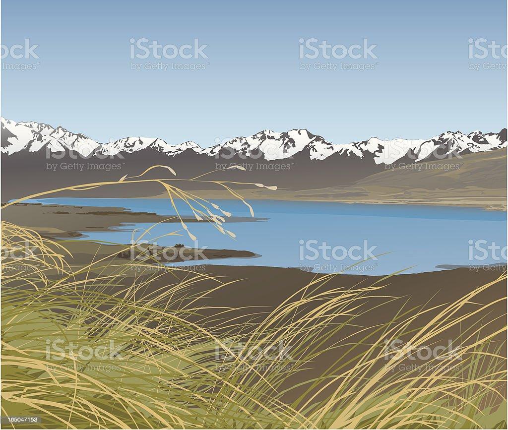 Tussocklands vector art illustration