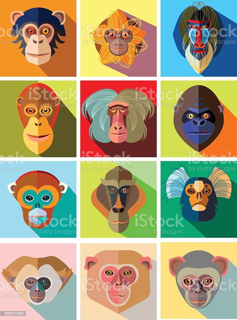 Twelve icons of monkeys of different breed in flat design vector art illustration