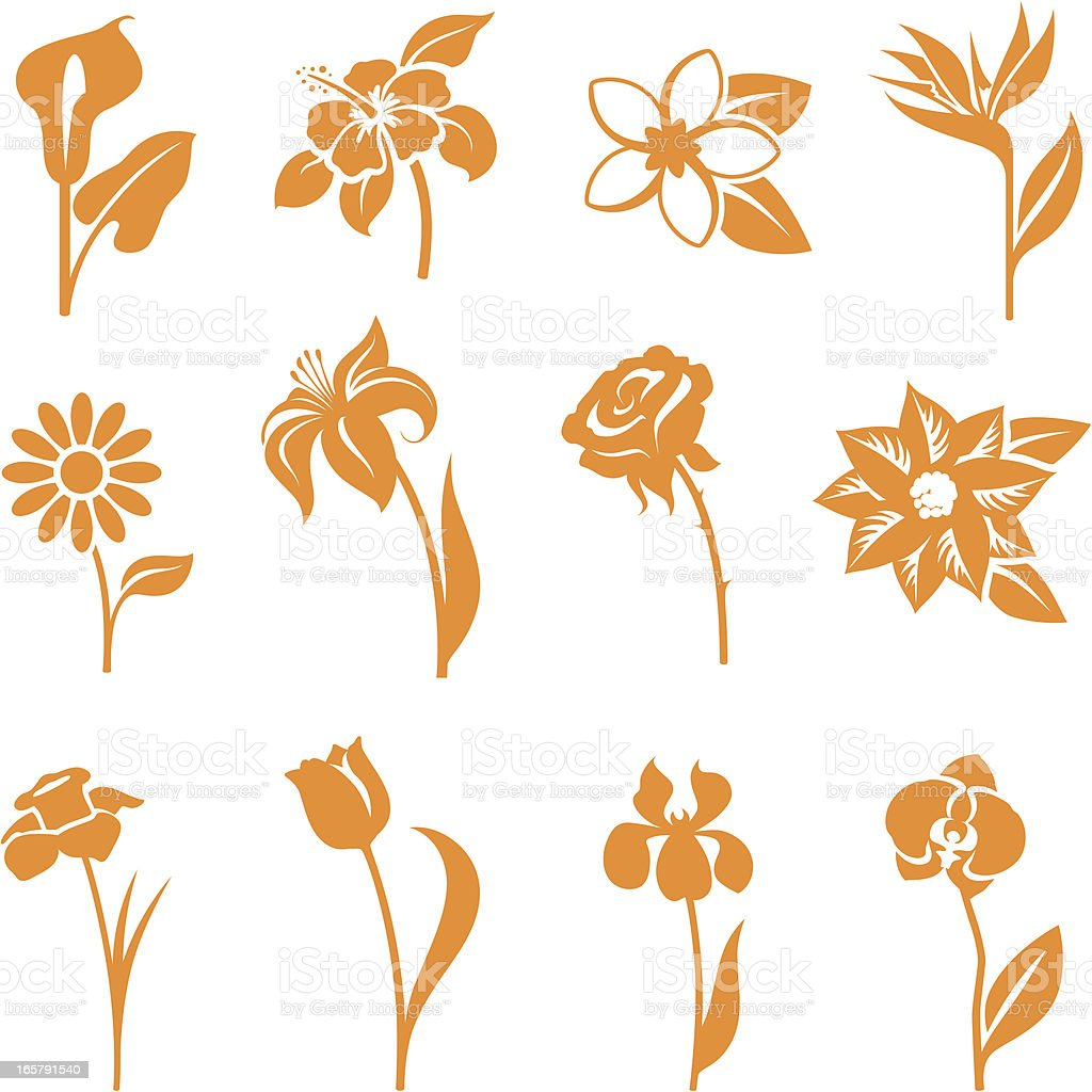 Twelve orange flower icons isolated on white background vector art illustration