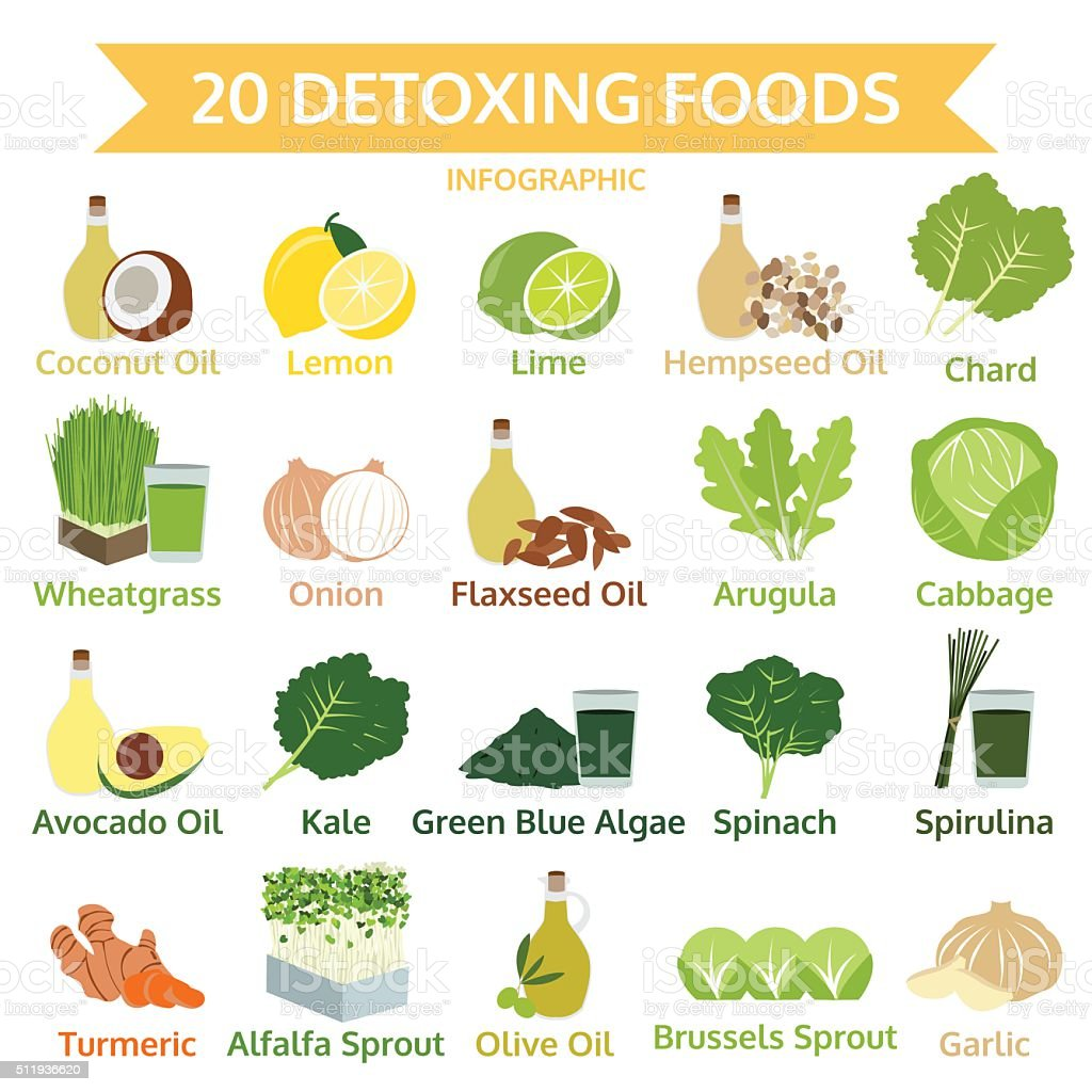 twenty detoxing foods, info graphic flat food, vector illustration vector art illustration