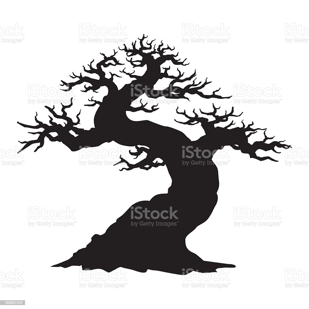 Twisted Bonsai royalty-free stock vector art