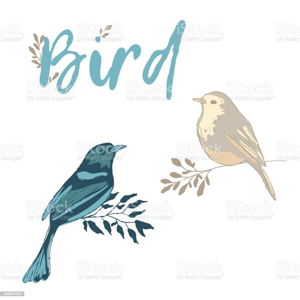 Two birds on the branches. vector art illustration