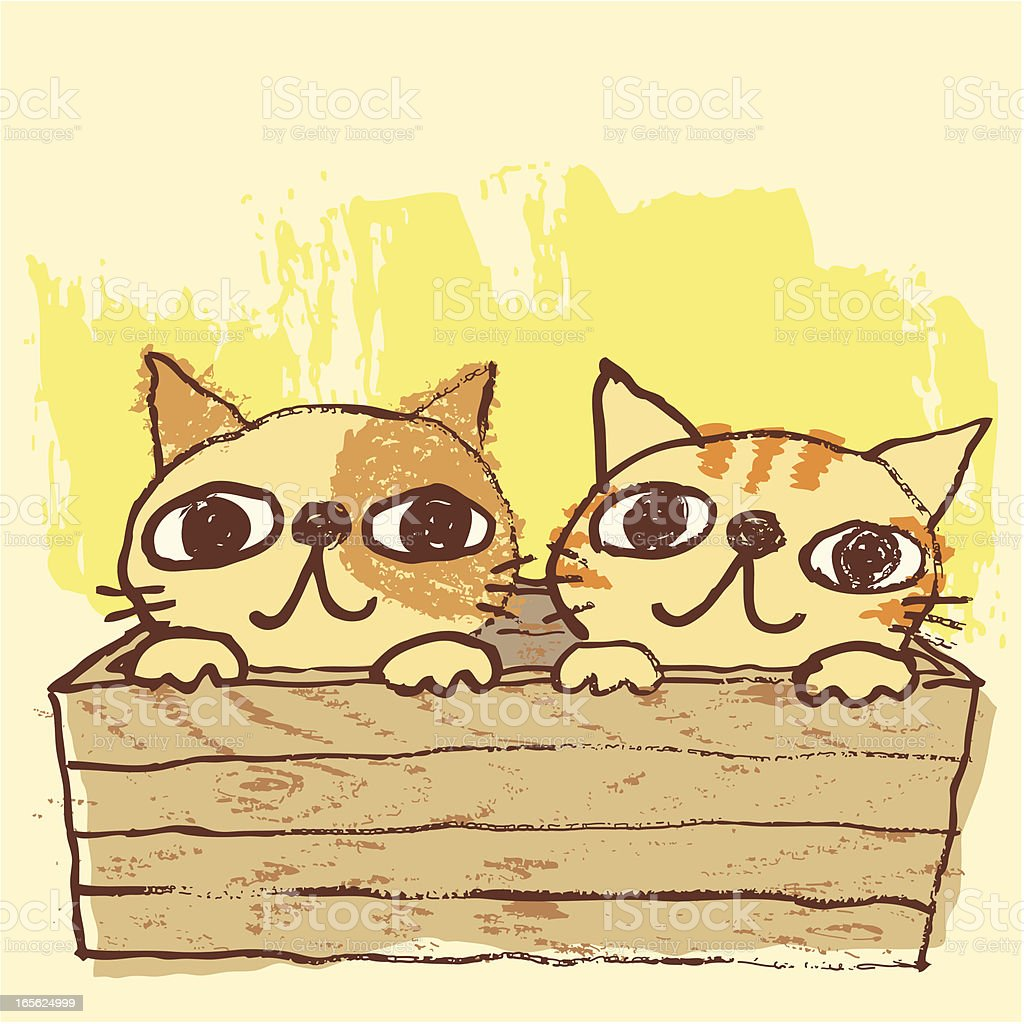 two cats in box vector art illustration