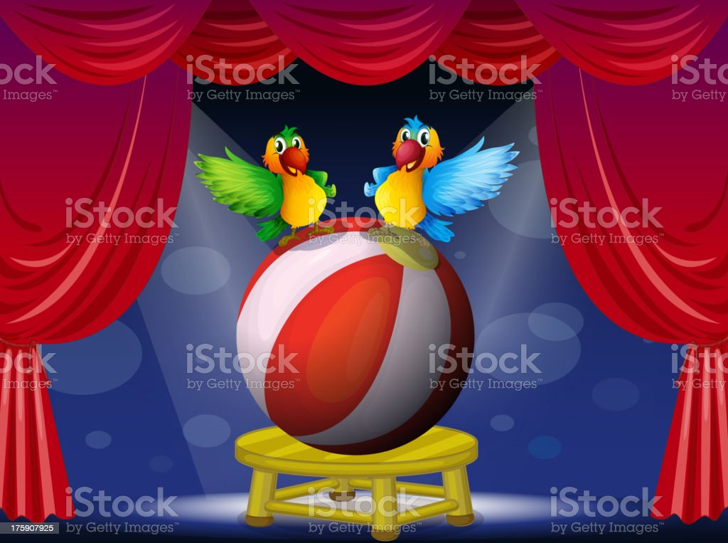 Two colorful parrots at the stage royalty-free stock vector art