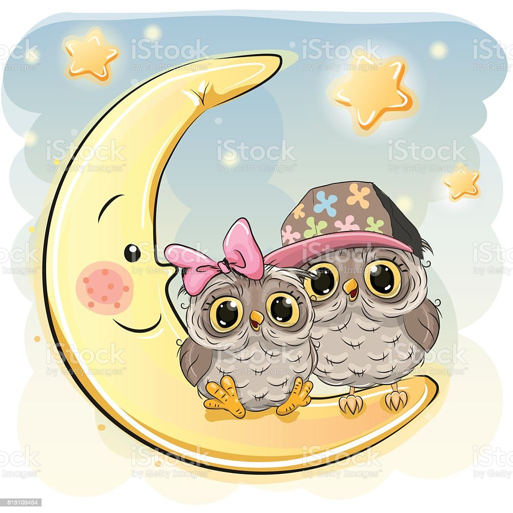 Two Cute Owls on the moon vector art illustration