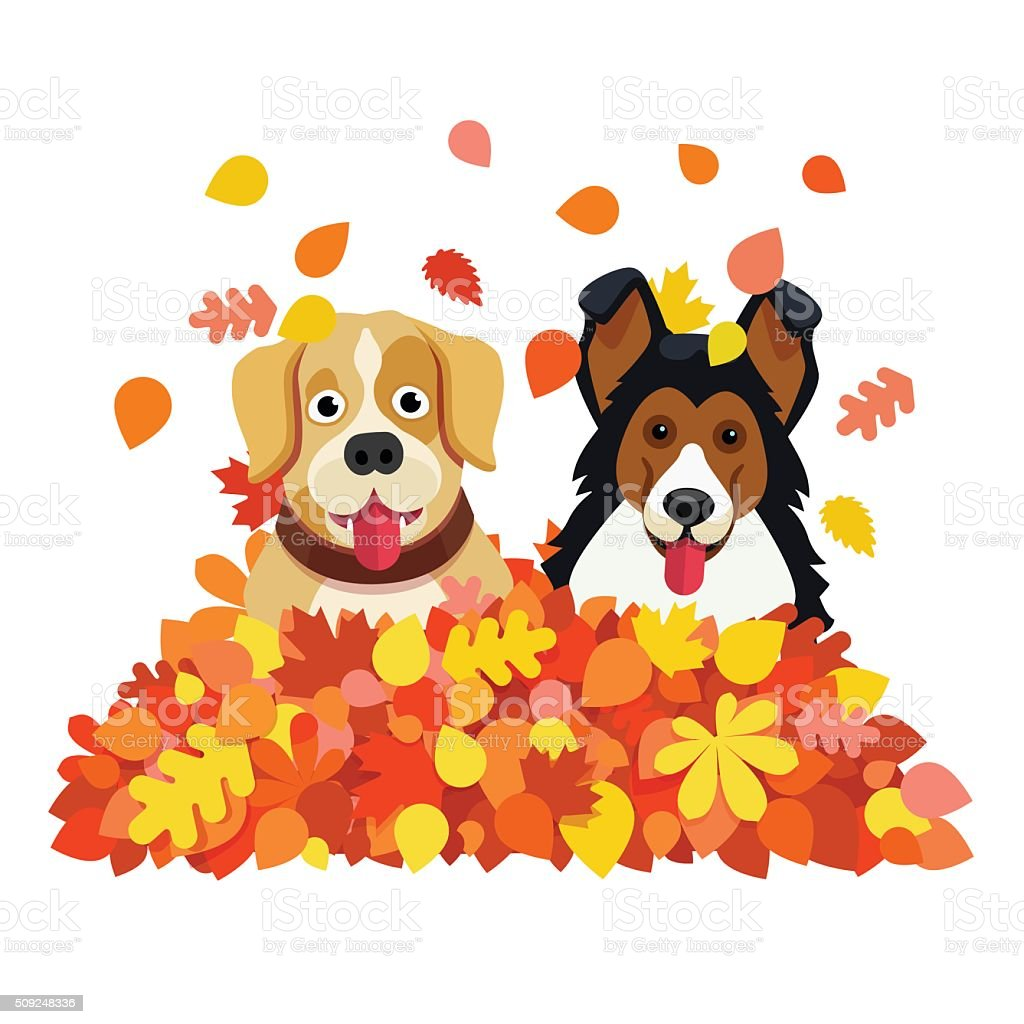 Two dogs playing in an autumn fallen leafs pile vector art illustration