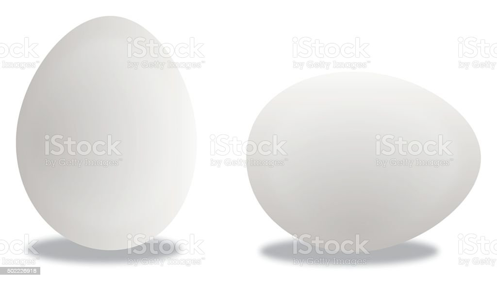 Two Eggs vector art illustration