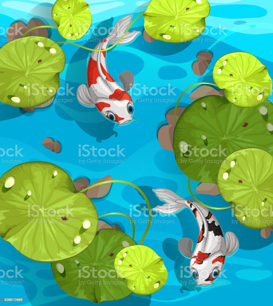 Two fish swimming in the pond vector art illustration