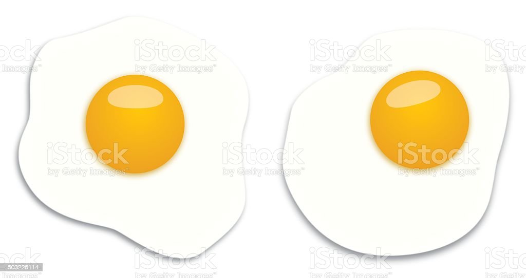 Two Fried Eggs vector art illustration