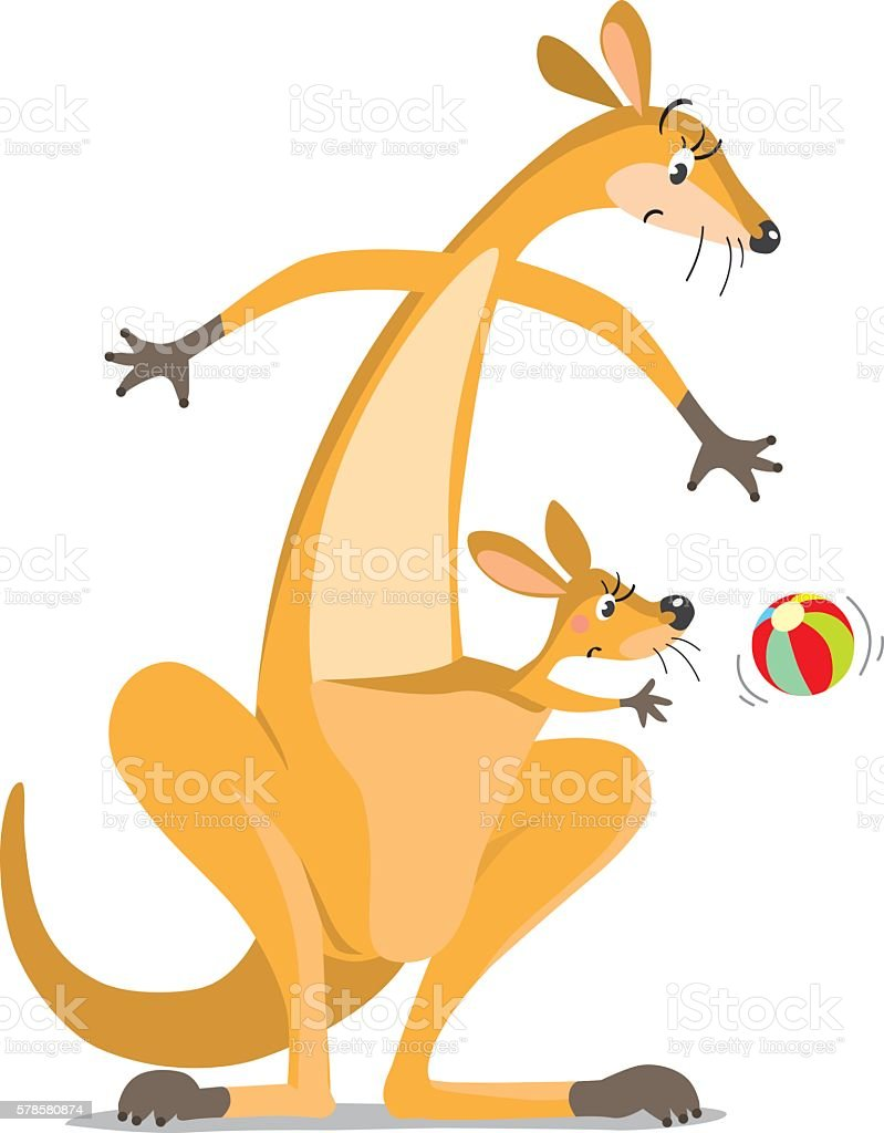 Two funny surprised kangaroos with a ball vector art illustration