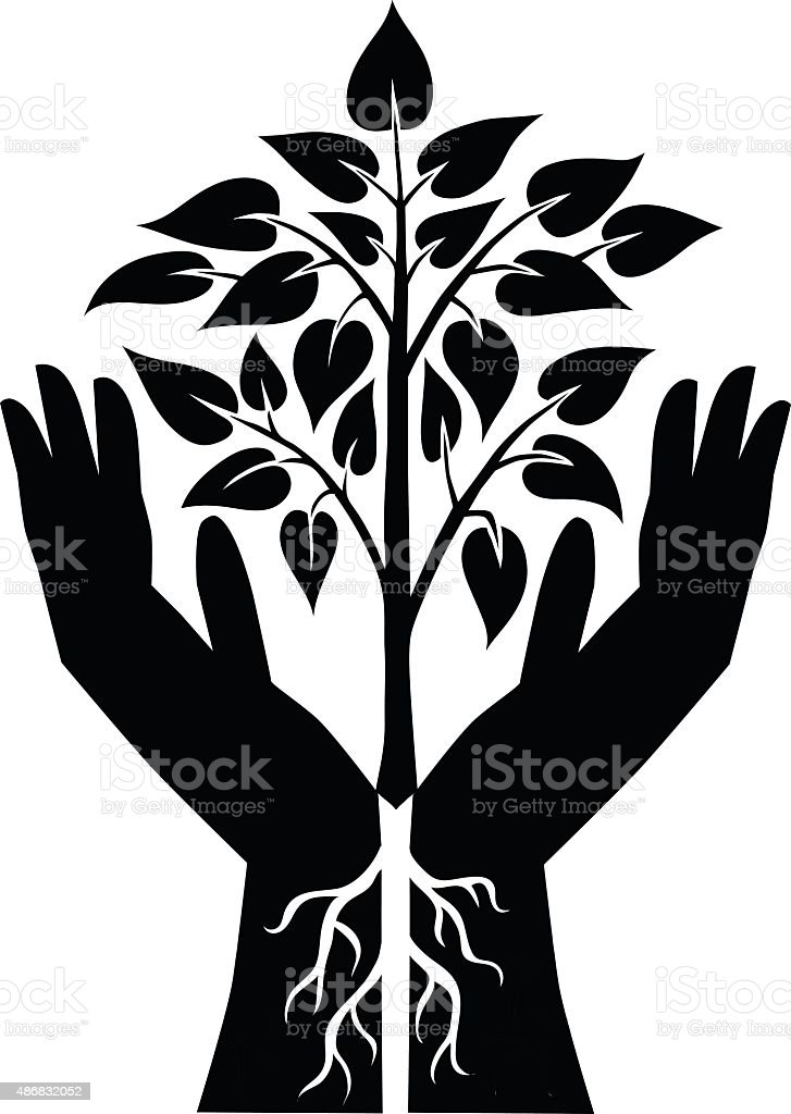 Two Hands Growing Small Plant - Black and White Silhouette vector art illustration