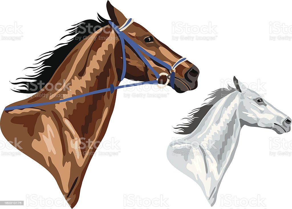 two horse heads royalty-free stock vector art