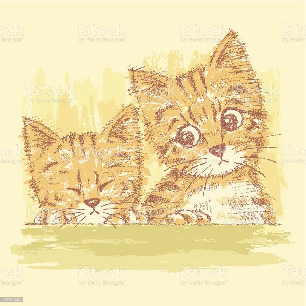 Two kittens' portraits vector art illustration