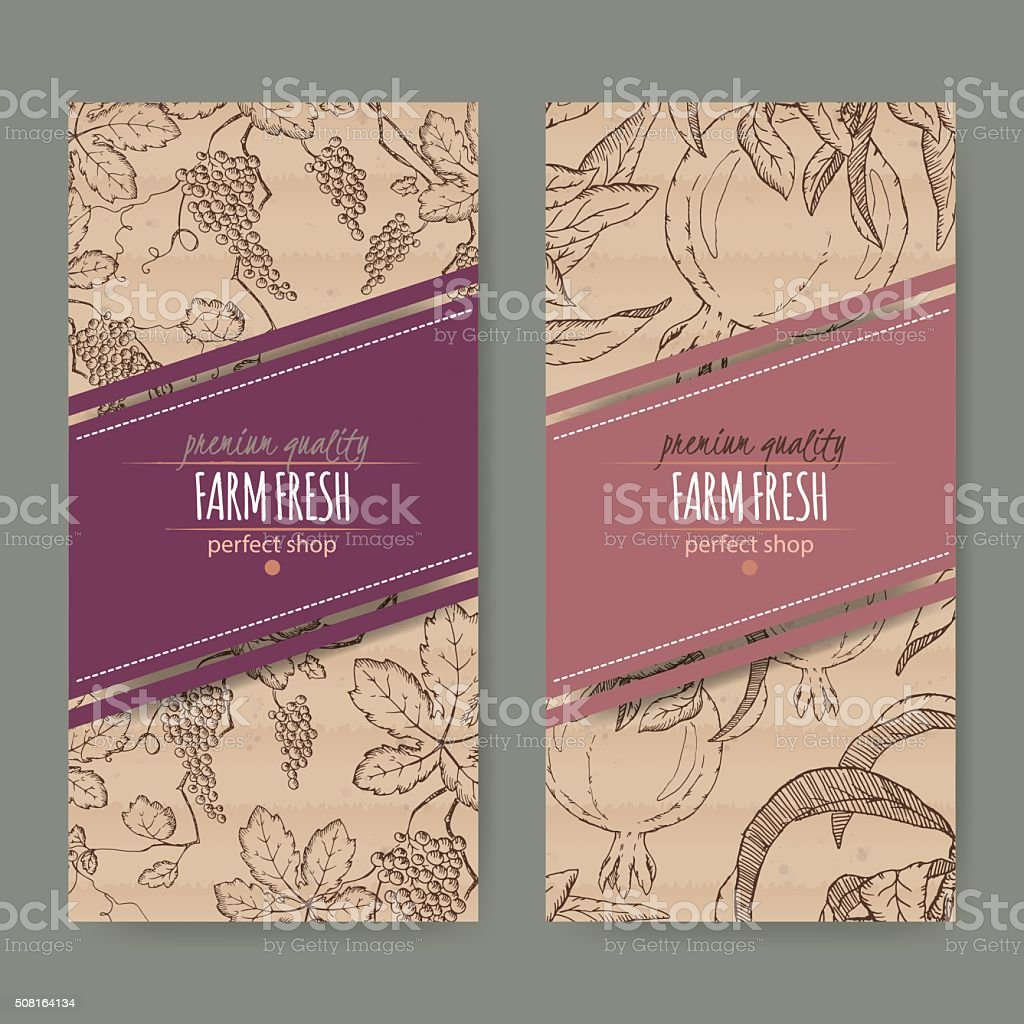 two labels with grape and pomegranate branch on cardboard texture. vector art illustration