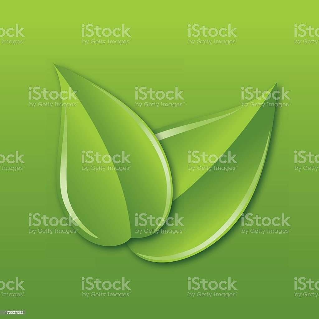 Two Leaves Overlapping Diagonally on a Green Square Background vector art illustration