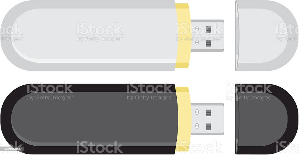 Two mobile USB flash drive memory royalty-free stock vector art