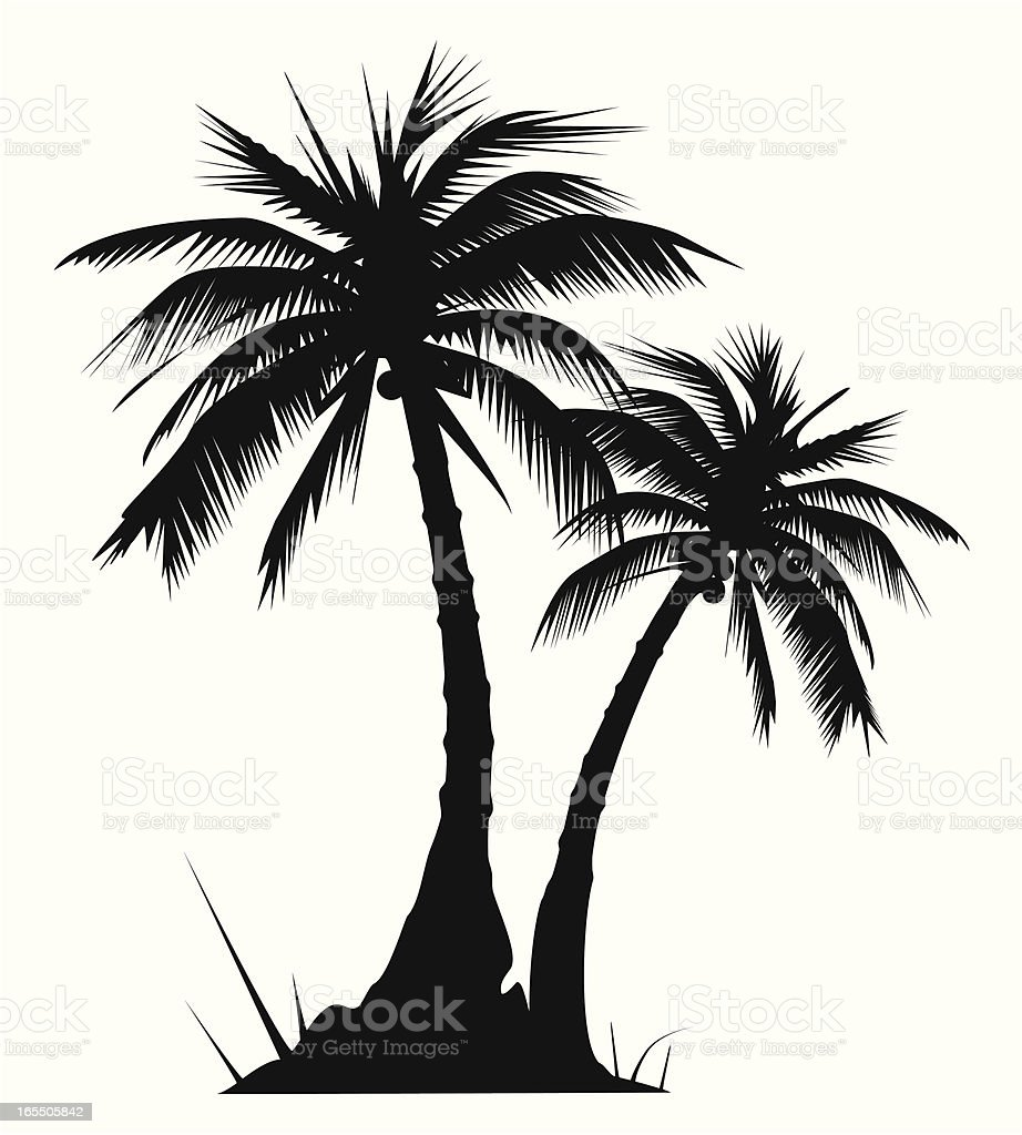 Two palm trees - VECTOR vector art illustration