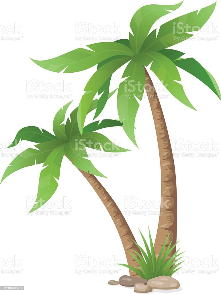 two palms tree isolated vector art illustration