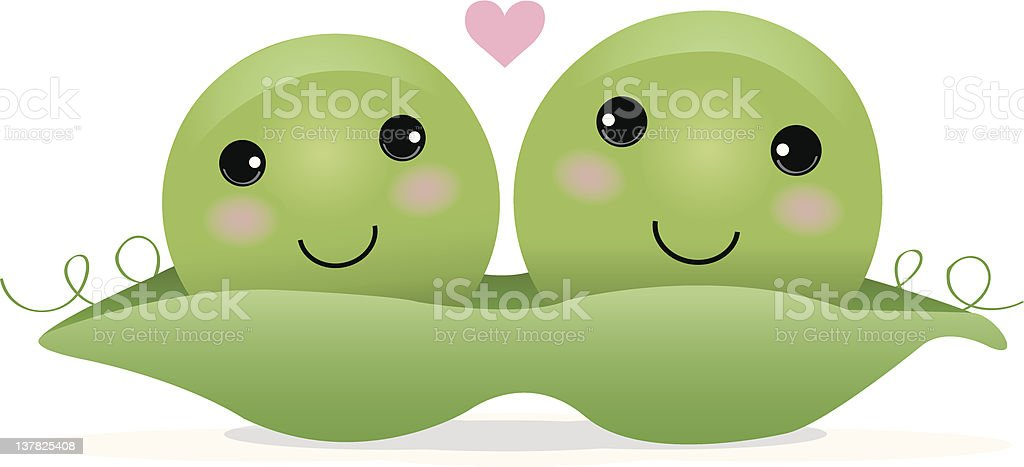 Two Peas in a Pod vector art illustration