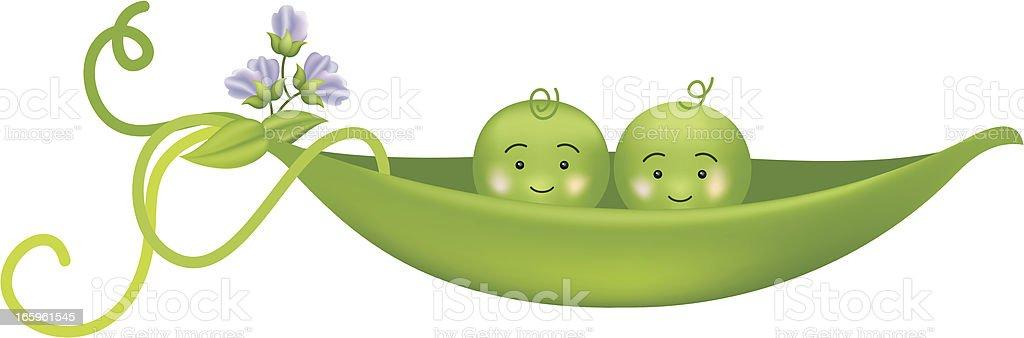 Two Peas In A Pod Vector Illustration vector art illustration