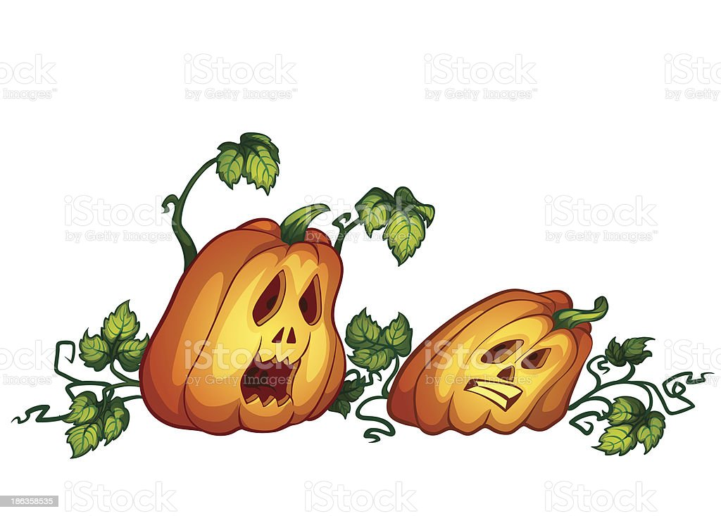 two pumpkins royalty-free stock vector art