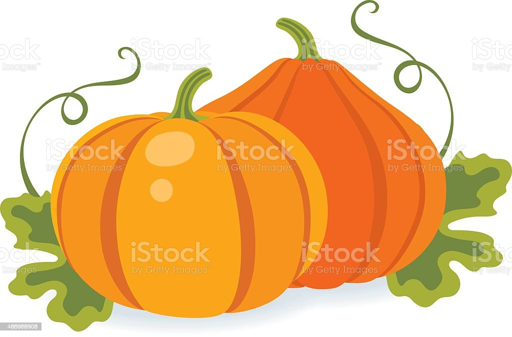 Two pumpkins with leaves vector art illustration