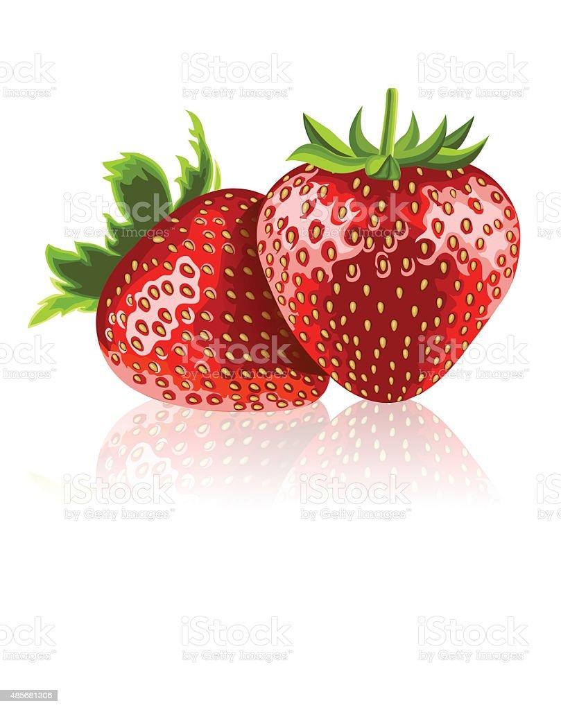 Two ripe strawberries vector art illustration